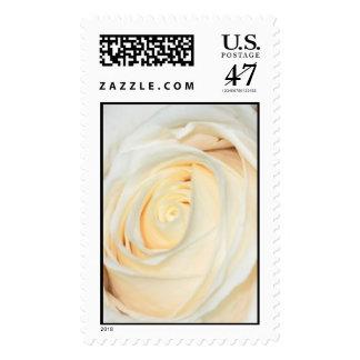 White Rose bud Stamp