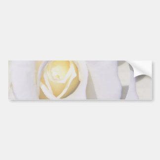 White Rose_ Bumper Stickers