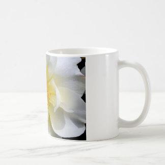 White rose centre coffee mug