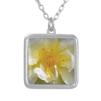 White rose centre necklace
