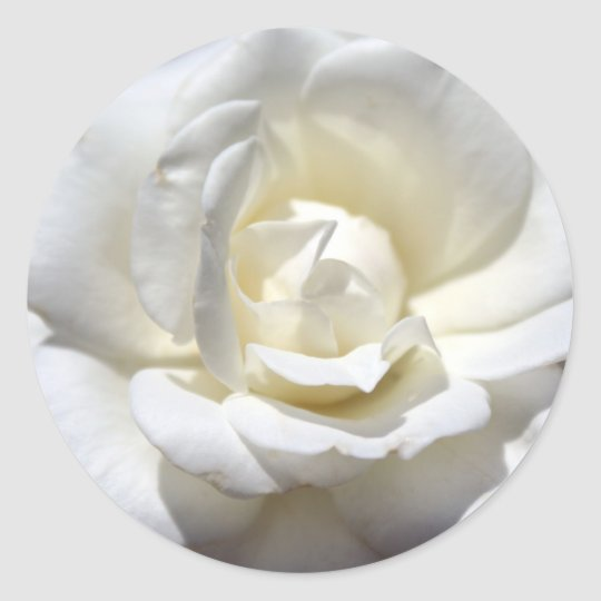 White Rose Classic Round Sticker