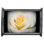 White Rose close-up Black Border Food Trays