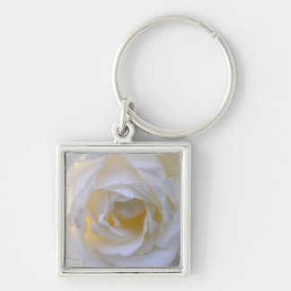 white rose close up square keychain