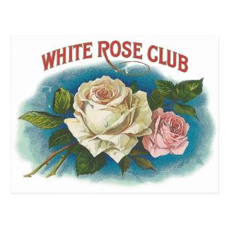 White Rose Club Postcard