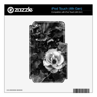 White Rose Collection Decal For iPod Touch 4G