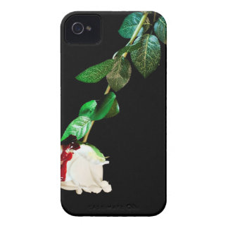 White rose covered with blood iPhone 4 case