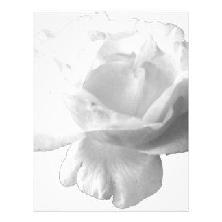 White Rose Design Letterhead