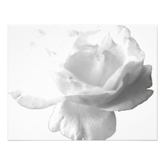 White Rose Design Personalized Invites