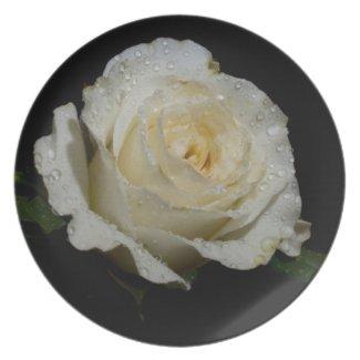 White Rose Dinner Plates