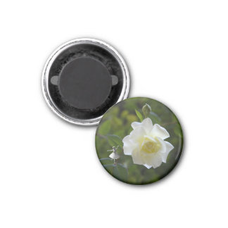 White Rose Fairy Refrigerator Magnets