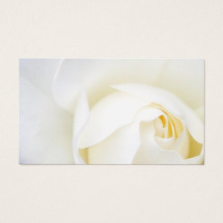 White rose flower floral business or profile card