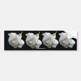 White Rose Flower Photo Bumper Sticker Car Bumper Sticker