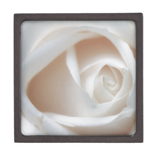 White rose gift box