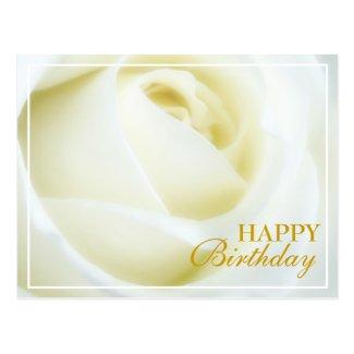 White Rose Happy Birthday Postcard