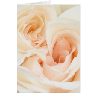 White Rose: Innocent and Pure Love Card
