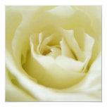 """White Rose  Invitations 5.25"""" Square Invitation Card"""