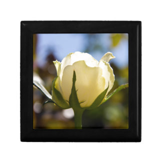 White Rose Jewelry Boxes