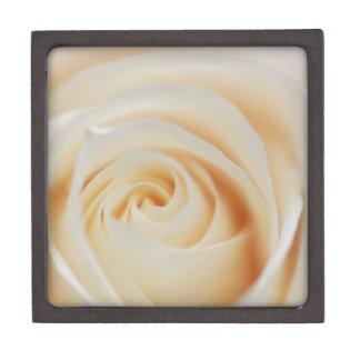 White Rose Macro Gift Box
