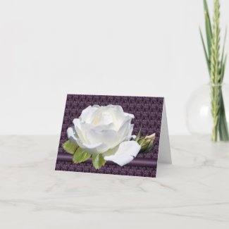 White Rose Note Cards card