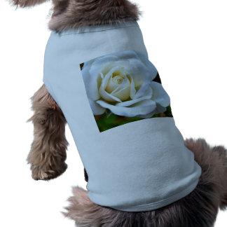 White Rose of Love Pet Shirt
