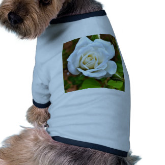 White Rose of Love Pet T Shirt