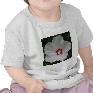 White Rose of Sharon T Shirts