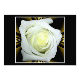White Rose on Black and Gold Background Card