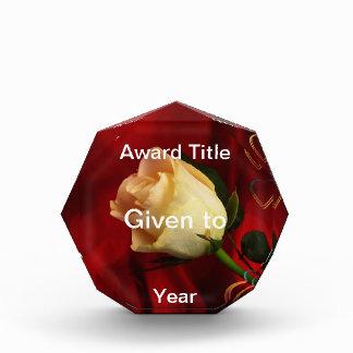 White rose on red background acrylic award