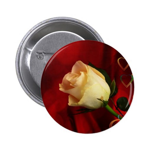 White rose on red background pinback buttons