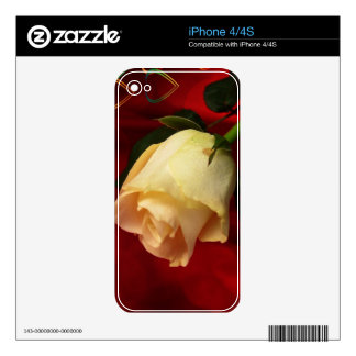 White rose on red background iPhone 4 decal