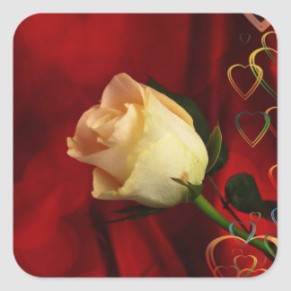 White rose on red background square sticker