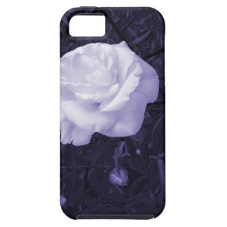 White Rose Photograph with Purple Tint iPhone SE/5/5s Case