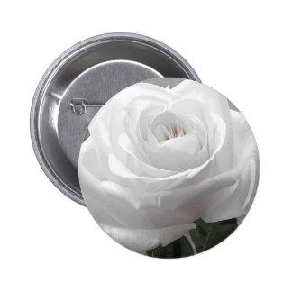 White Rose Pinback Button