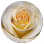 White Rose Porcelain Plate
