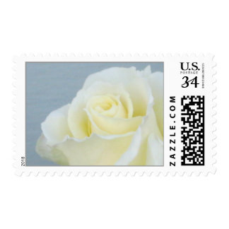 White Rose Postage 29 cent