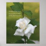 White Rose Poster: ROSE & PROSE 16x20