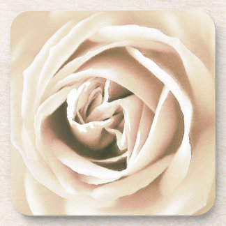 White rose print coaster