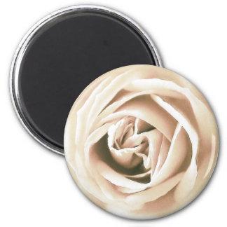 White rose print magnet
