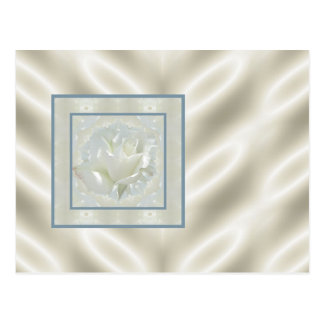 White Rose Satin Border Postcard