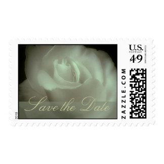 White rose save the date postage