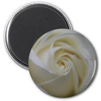 White rose soft focus 2 inch round magnet