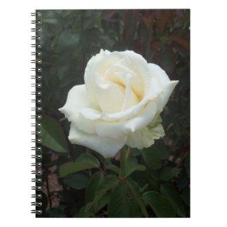 White Rose Spiral Photo Notebook