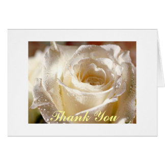 white rose, Thank You Card