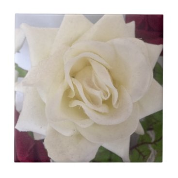 merydesigns WHITE ROSE TILE