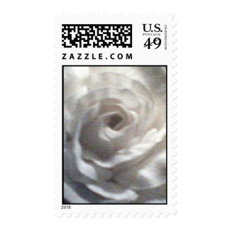 White rose up close postage stamps