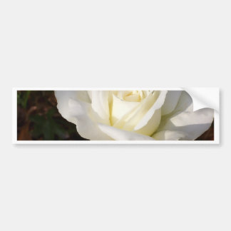 White Rose Wedding January Bridal Party Gifts Bumper Stickers