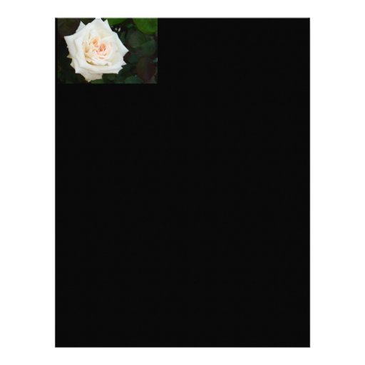 White Rose With Natural Garden Background Letterhead Template
