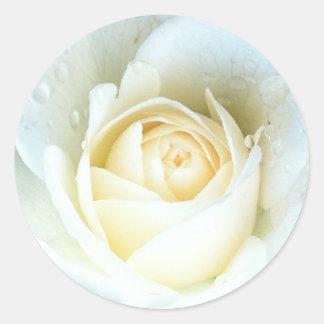 White Rose  with Raindrops Classic Round Sticker