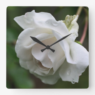 White Rose With Raindrops Flower Square Wall Clock