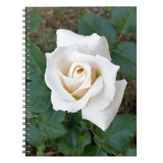 white rosebud notebook